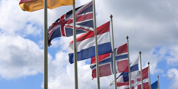 """What does EU citizens' potential """"settled status"""" mean for your business?"""