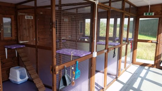 Rural grant funding leads to eco farm's new cattery