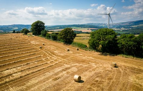 Support and information for rural businesses